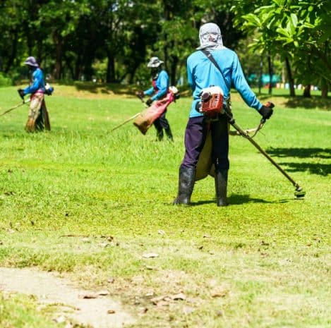 Brush Clearing Services, Hillside Clearing, Clear Hillside, Clear Brush, Lot Clean-Ups, Hillside Cleanup