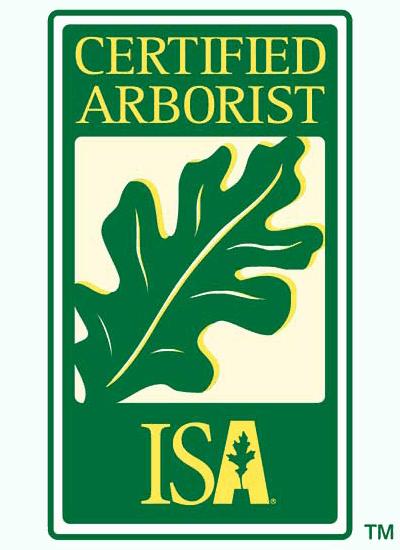 Certified Arborist Los Angeles, San Fernando Valley - ISA